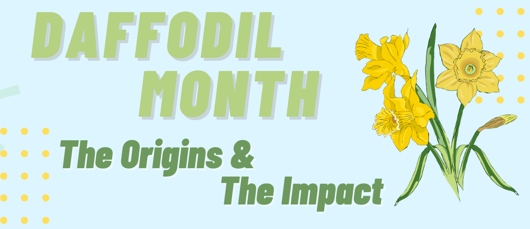 Daffodil Month: The Origins & The Impact